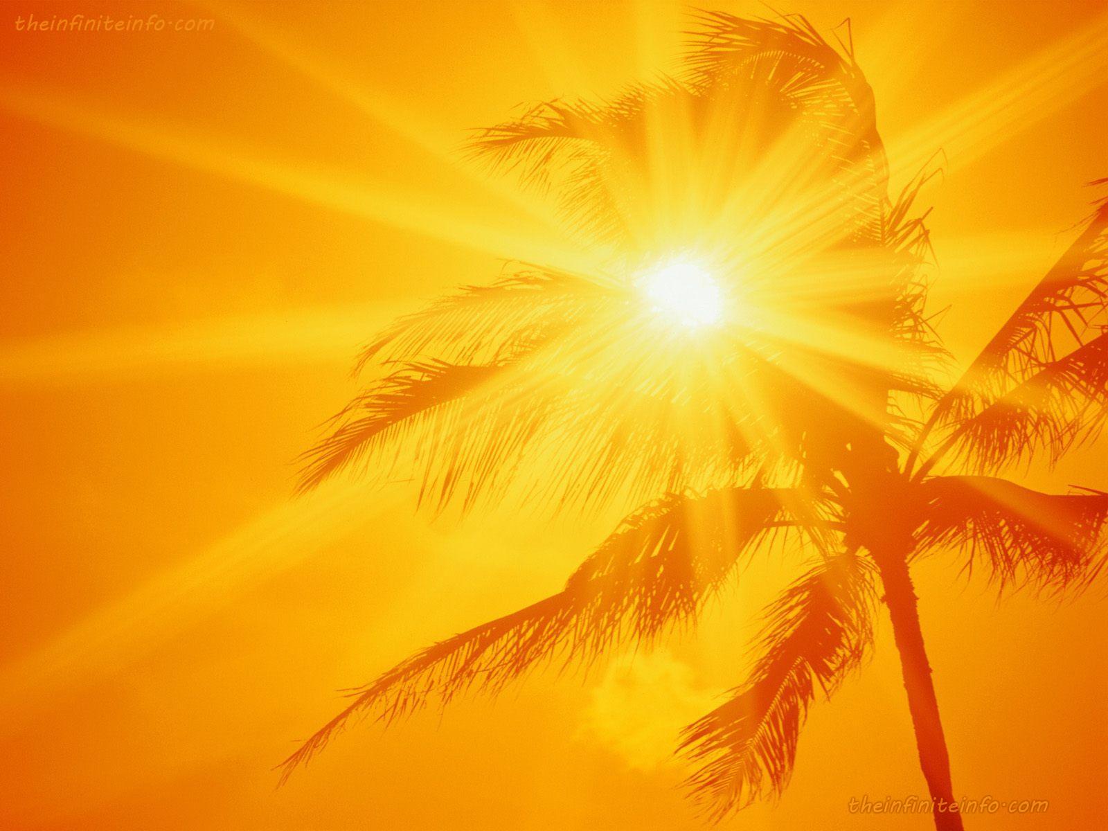 sunscreen11