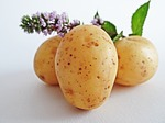 potatoes-448610_150